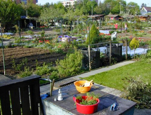 Gesucht: Fotos aus dem Frühsommer-Garten